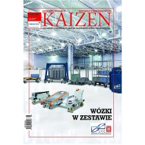 Kaizen 3/2013